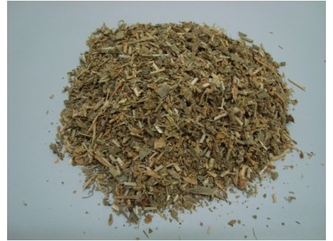 LEPIDIO (Lepidium latifolium)